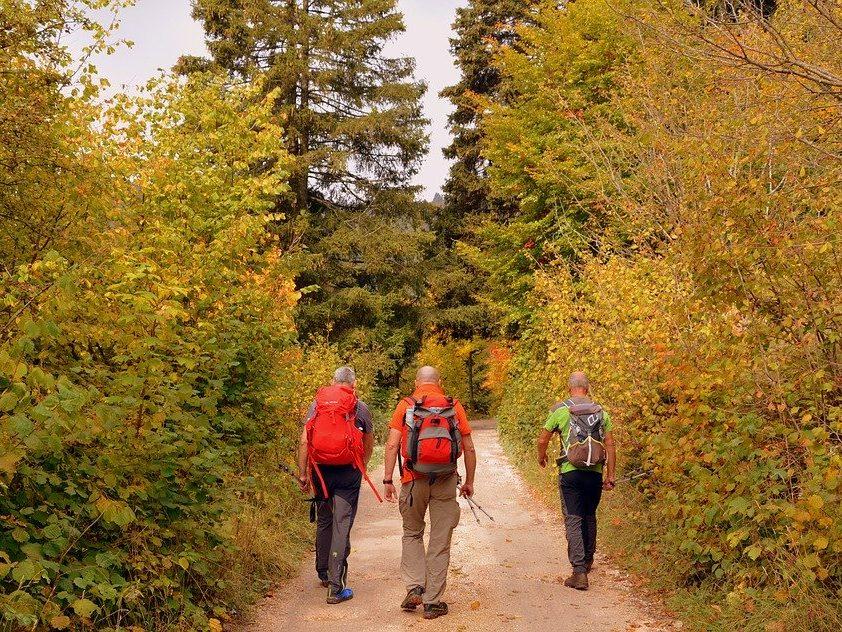 activité tourisme Ballade à pied en forêt durant l'automne
